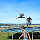 Choosing the right trampoline for your family - all the answers one click away